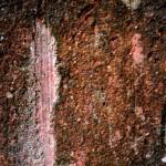 Jamestown Texture #3059