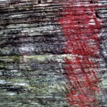 Jamestown Texture #3065